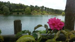 ristorante-il-lago